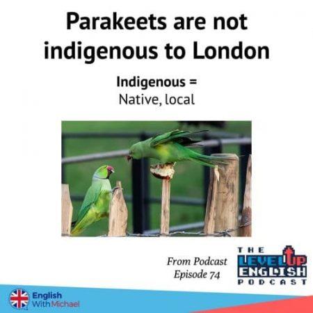 London's Parakeets